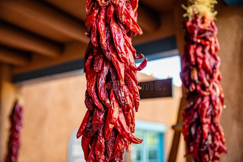 Red chili peppers dried hanging on a traditional building entrance, Santa Fe New Mexico. Red hot chili peppers ristras dried bunch hanging on a traditional stock photos