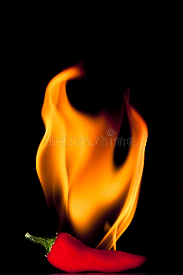 Free Red Hot Chilli Pepper Stock Photos - 18066543