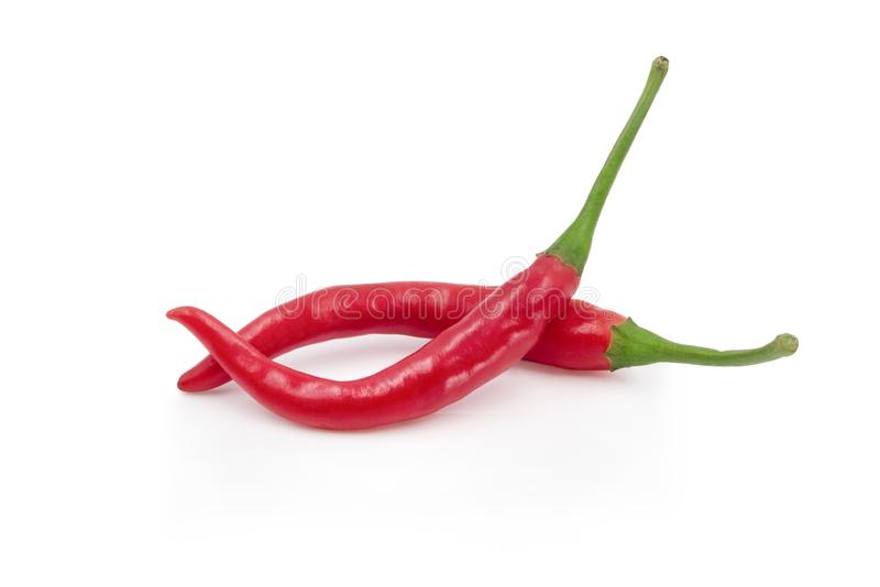 Red hot, Fresh chili peppers isolated on a white background royalty free stock image