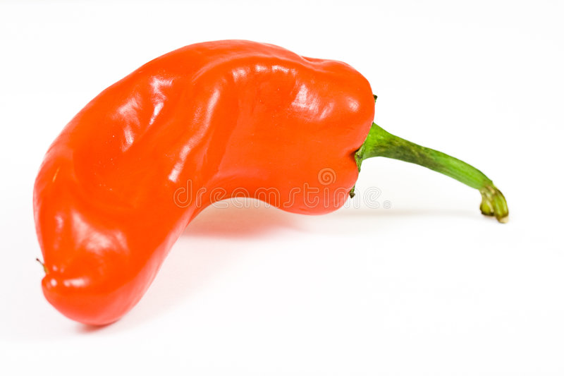 Download Red hot jalapeno pepper stock image. Image of culture - 3015061