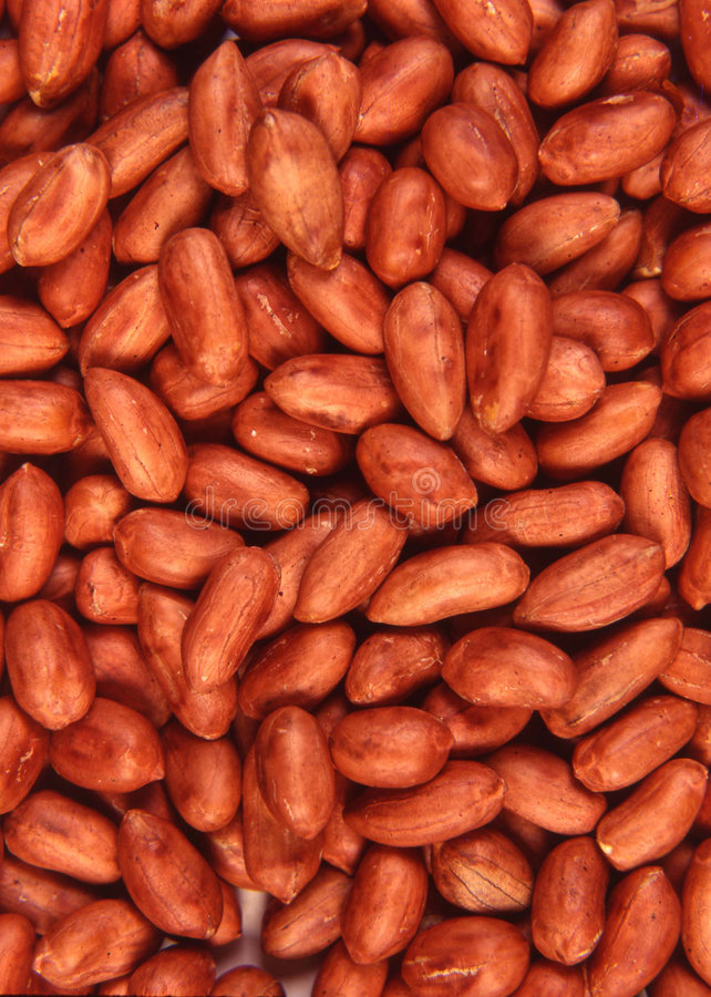 Download Red hot peanut stock photo. Image of dried, crust, pattern - 80356