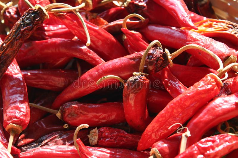 Red hot pepper. Red pepper fire royalty free stock images
