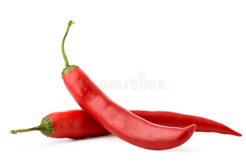Red hot pepper on white background, isolated. royalty free stock images