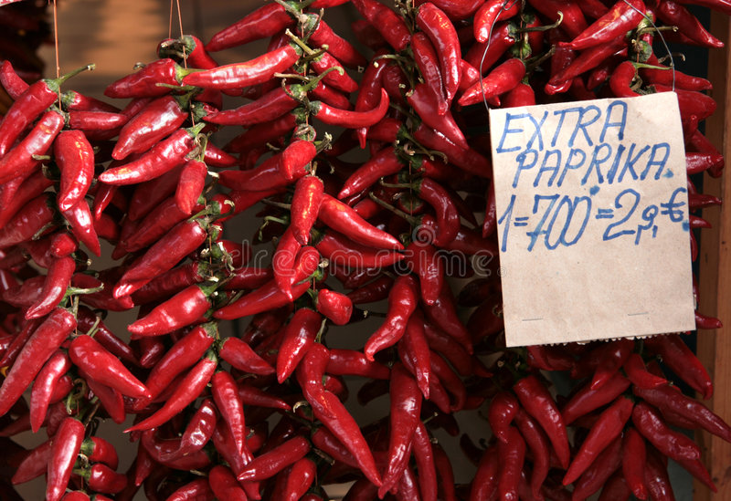 Download Red hot peppers stock photo. Image of spicy, spice, pepper - 7131424