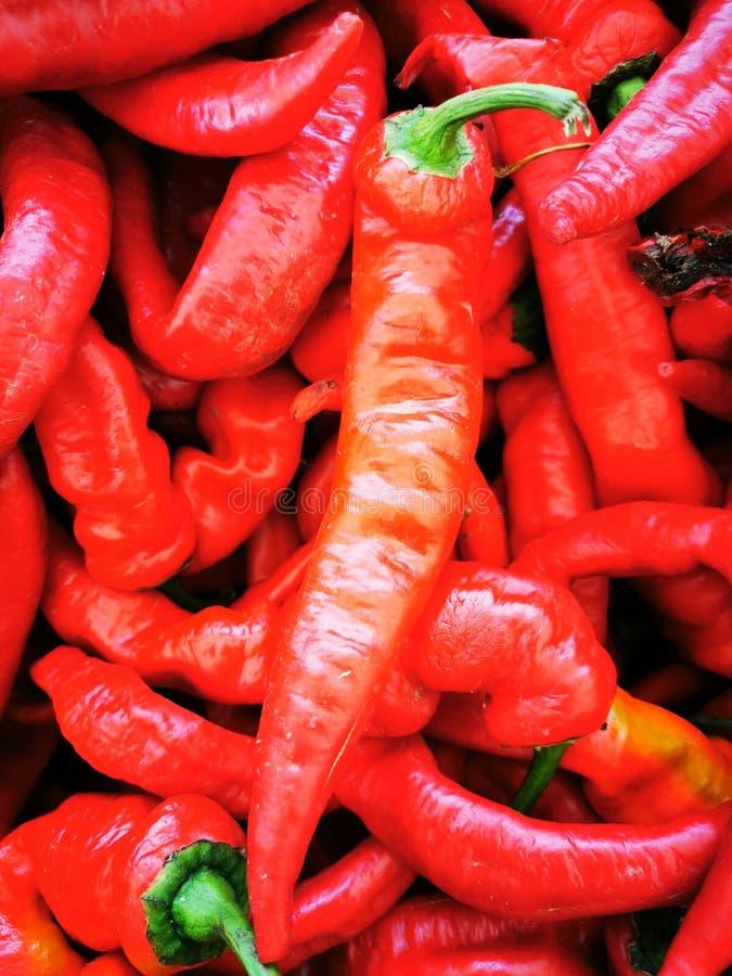 Red hot spicy chili & x27's in een willekeurige stapel op de lokale boerenmarkt royalty-vrije stock foto