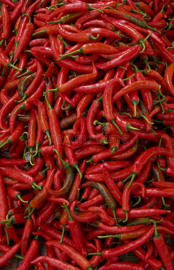 Free Red Hot Spicy Chillis Peppers Background Royalty Free Stock Photography - 14276277