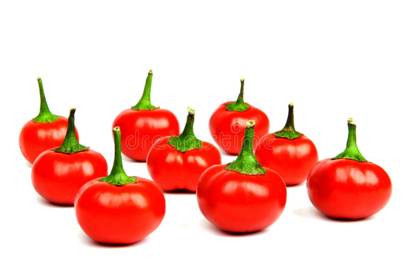 Red hot spicy peppers. On white background royalty free stock photography