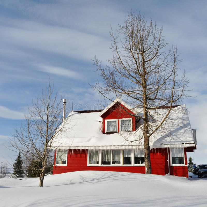 Red house in cold snowy winter, Iceland. Red house and tree in cold snowy winter, Iceland royalty free stock image
