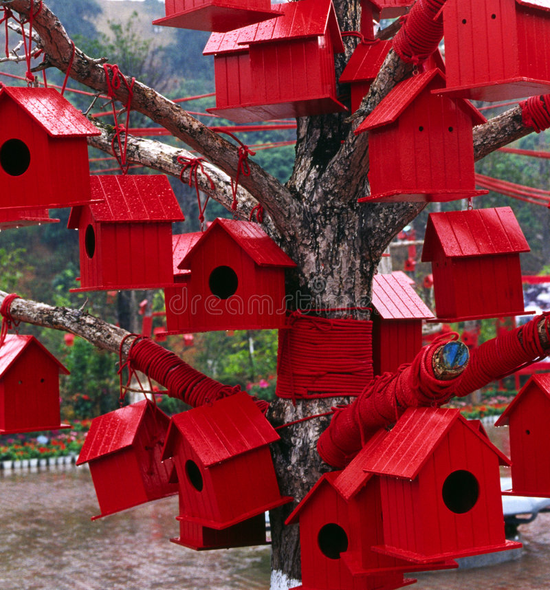 Red Houses. Many red houses on the tree. it is for the birds. Like houses in the city, too many people, too many houses