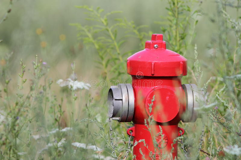 Red hydrant stock photos