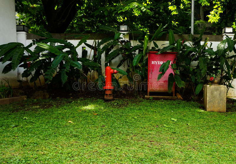 A Red Hydrant Box In The Middle Of Green Grassy Garden Photo Taken ...