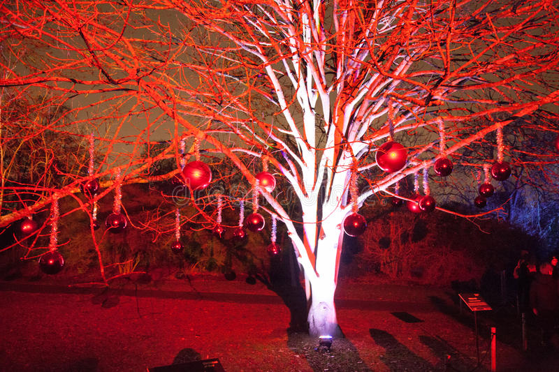 A red illuminated tree with Christmas baubles hanging from it stock image