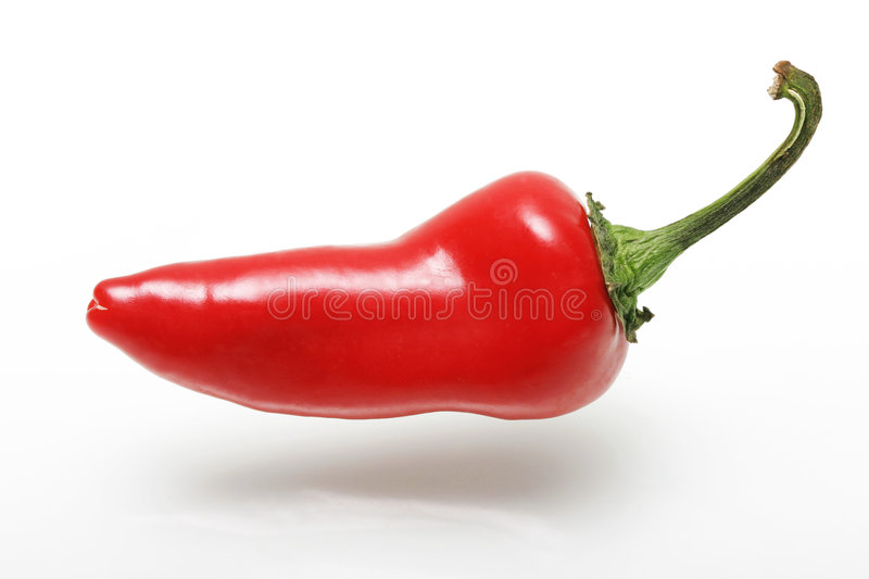 Red Jalepeno Pepper. Red pepper floating on a white background royalty free stock photos