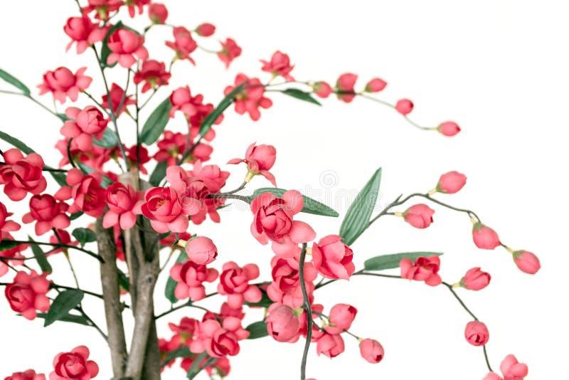 Red Japanese flowering cherry. Handmade cloth flower, Red Japanese flowering cherry stock image