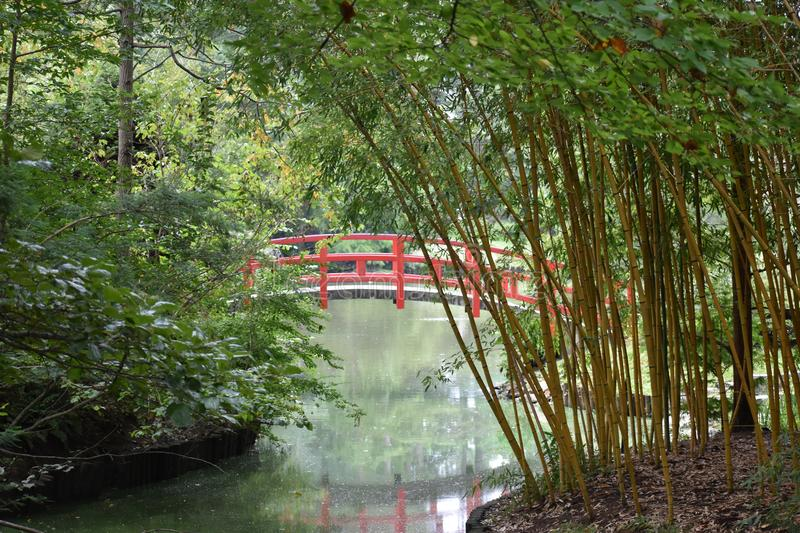 Download Red Japanese Garden Bridge Stock Image. Image Of Waterway    100673099