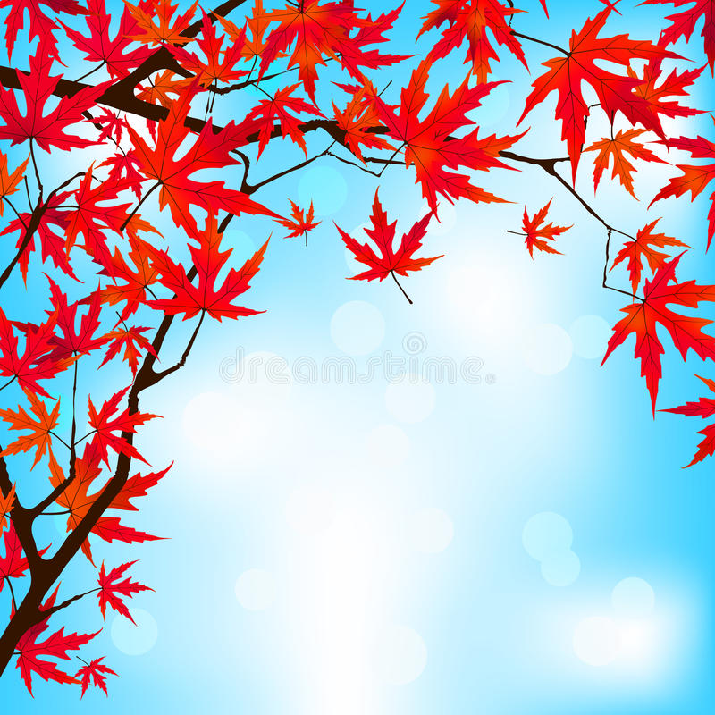 Free Red Japanese Maple Leaves Against Blue Sky. EPS 8 Royalty Free Stock Images - 41374589