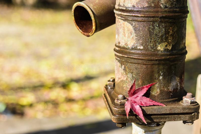 A red Japanese maple tree leaf at an old well hand water pump in Japan in Autumn or fall. stock photography