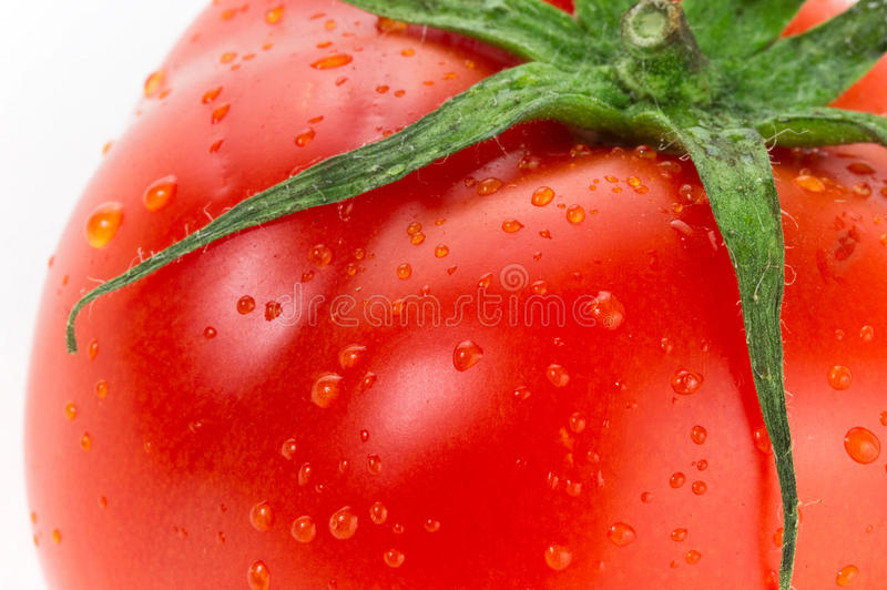 Red juicy tomato royalty free stock image