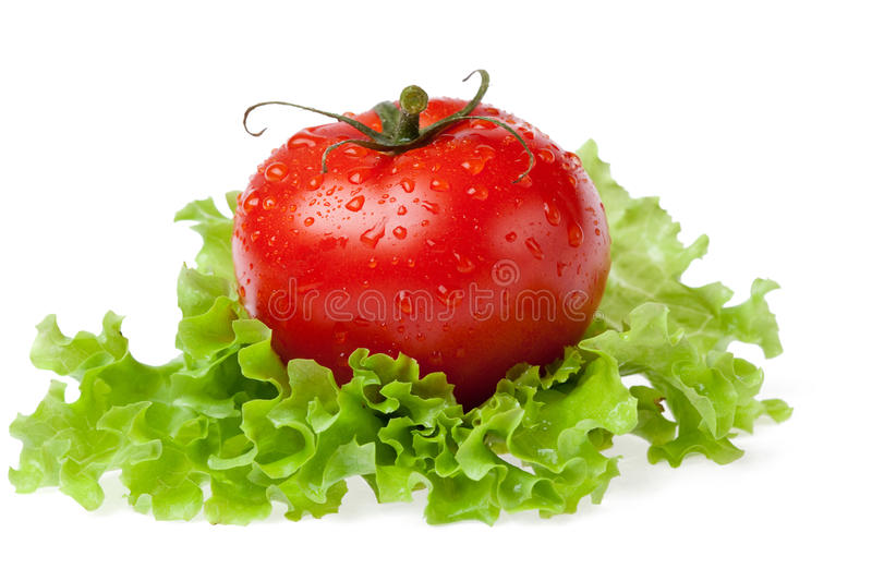 Download Red Juicy Tomato With Litho Of The Salad Stock Photo - Image: 14948692