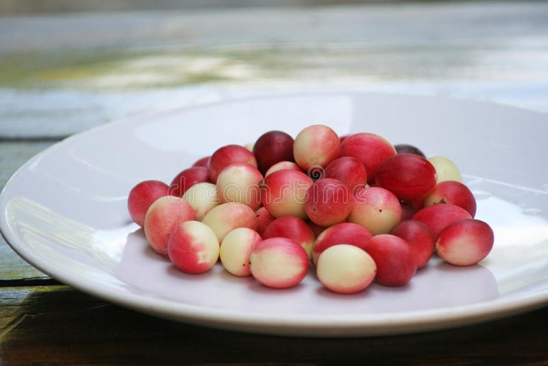 Red karonda on white plate royalty free stock photo