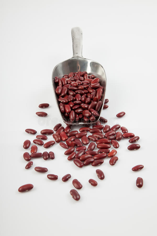 Download Red Kidney Beans With Scoop Stock Image - Image of vegetarian, transfer: 47455299