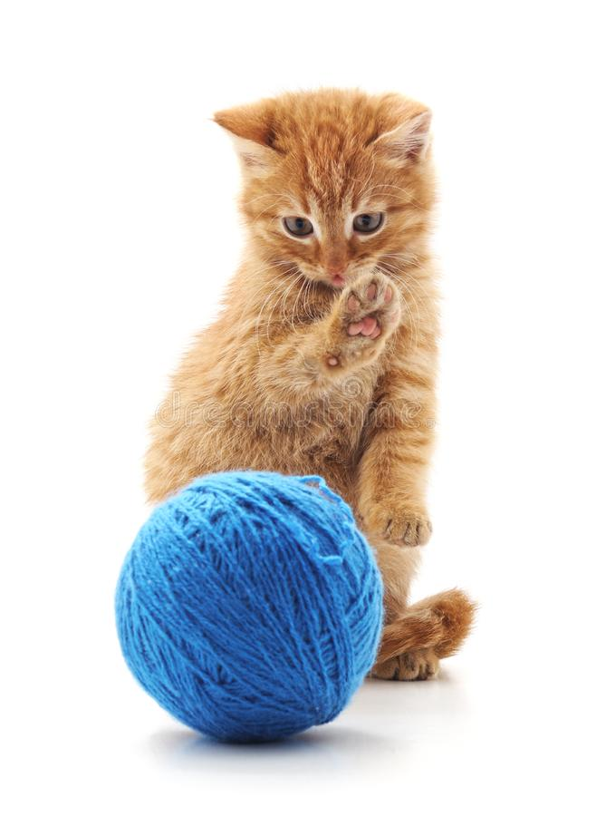 Red kitten with a ball stock image