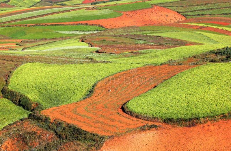 Download Red Land stock image. Image of highland, china, yunnan - 27712363