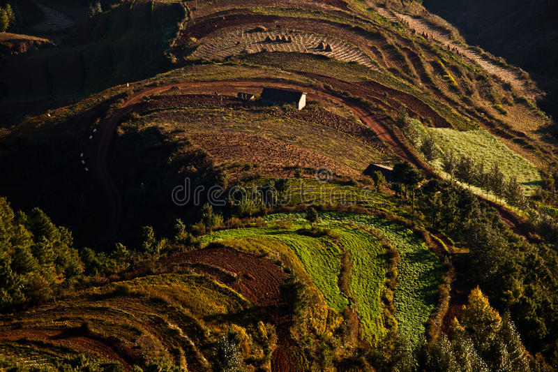 Download Red land in sunrise stock photo. Image of damakan, forest - 22065352