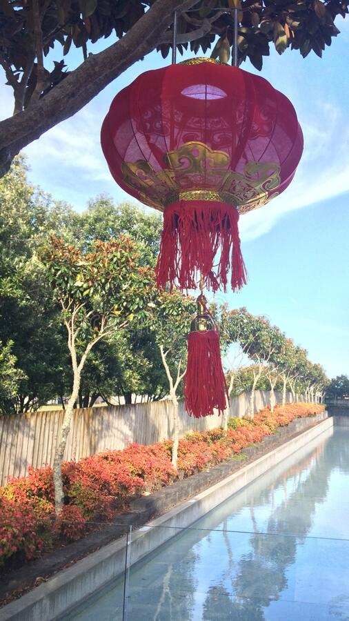 Red lantern hanging on tree with swimming pool and tree flowers as background stock photo