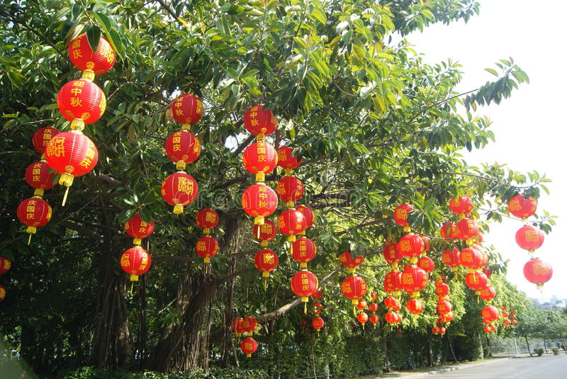 Red lantern hanging in the trees