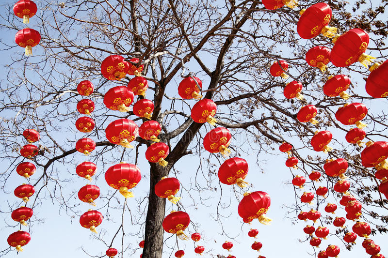 Red lanterns in new year stock photo