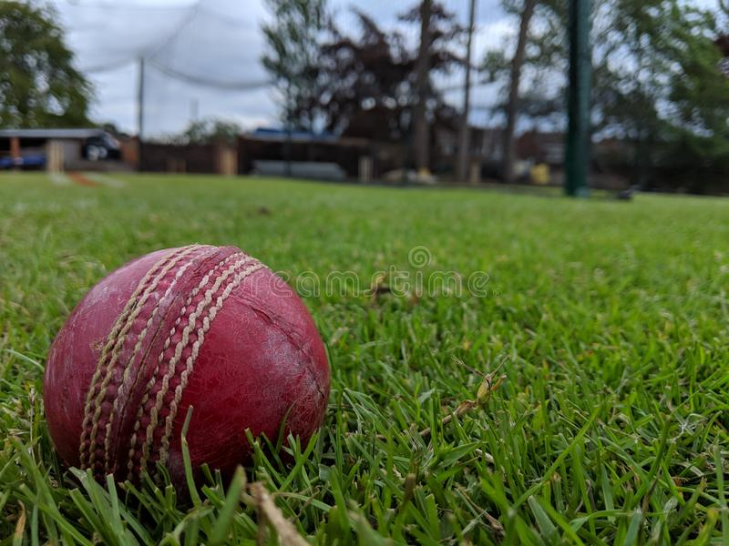 A red leather cricket ball on the grass in front of the nets stock images