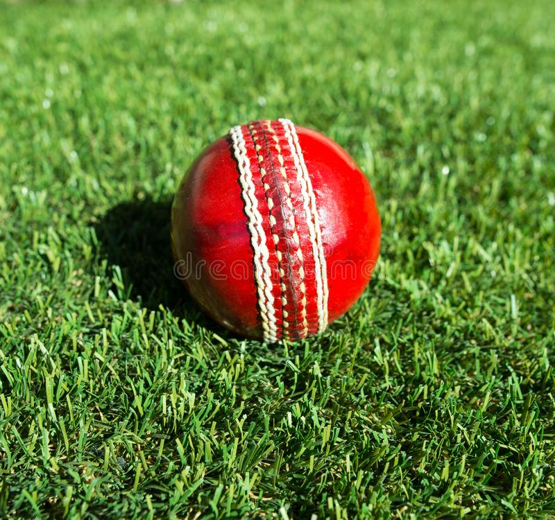 A red leather cricket ball on a lush lawn. stock photography