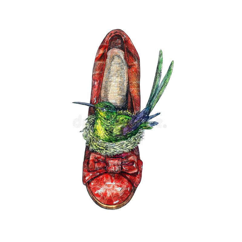 Red leather heel shoes front view with green hummingbird sitting in nest inside, hand painted watercolor with ink drawing stock illustration