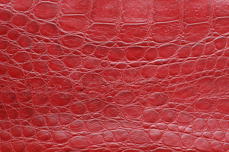 Download Red leather texture stock photo. Image of crocodile, effortless - 24443940