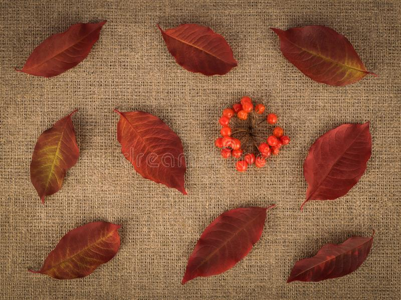 Red leaves and berries on linen background royalty free stock photo