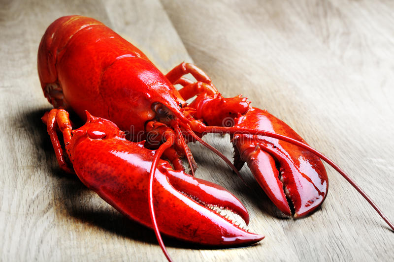 Red Lobster on wood stock photography