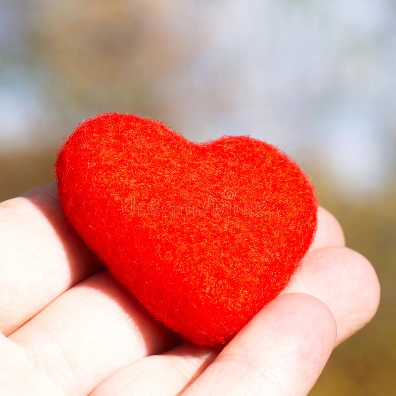 Red lonely sad heart on a background of a yellow autumn forest royalty free stock photos