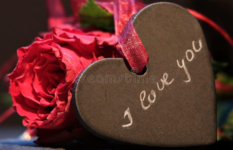 Red, Love, Petal, Valentine's Day stock photo