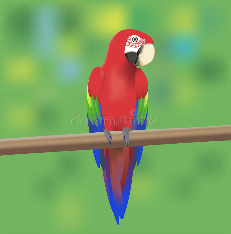 Download Red Macaw Parrot stock vector. Image of isolated, approaching - 25452440