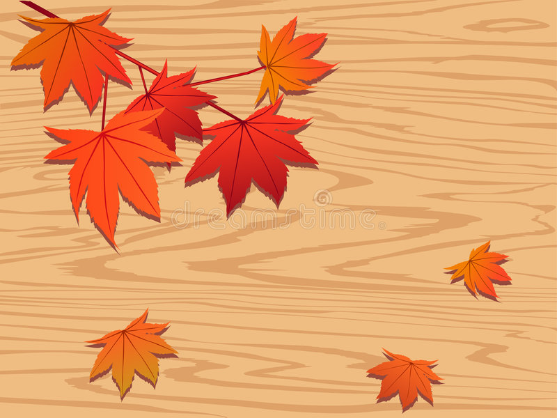 Red Maple Leaf On Wood Stock Photo