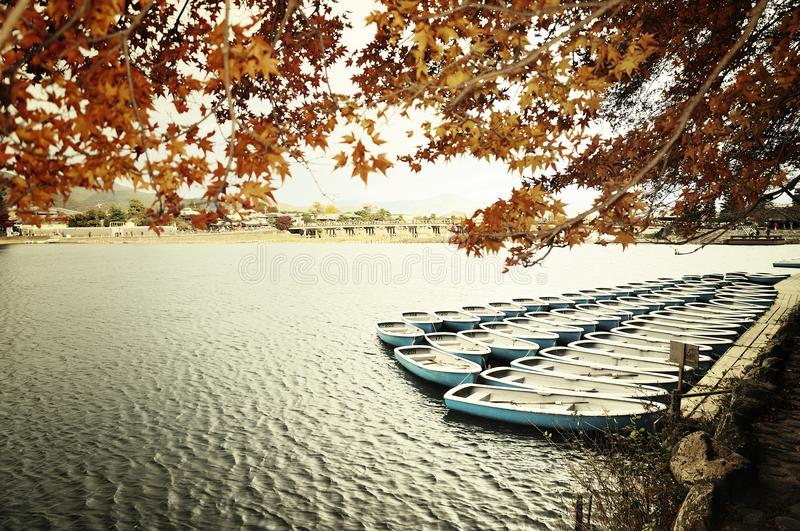 River scence in autumn of Japan. The red maple leaves in autumn of Japan along the river with many boats royalty free stock images