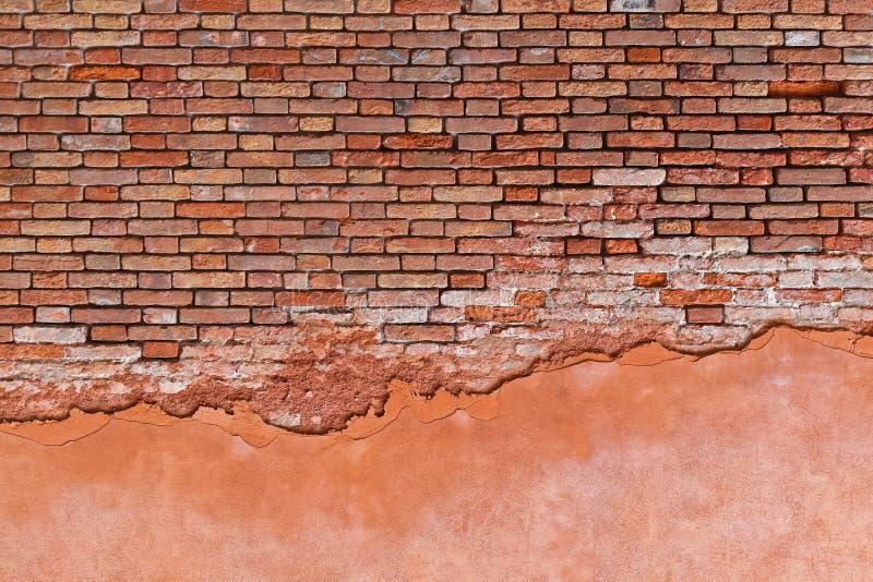 Download Red med den vita skarven arkivfoto. Bild av murket, bygger - 76702818