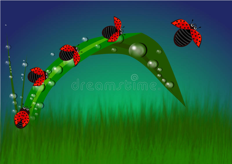 When Red meets Green. The colors of beautiful nature. Red lady bugs on the green grass illustrations background