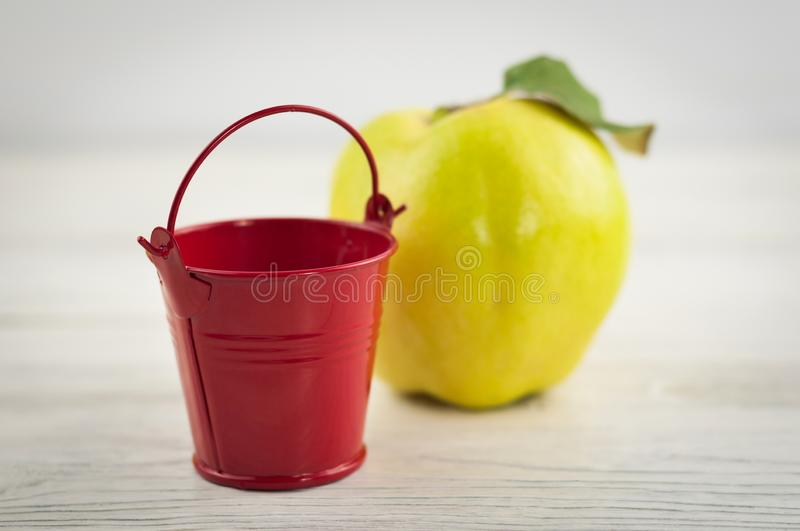 Red metal empty bucket with handle on background of fresh ripe quince on old weathered rustic wooden table royalty free stock photos