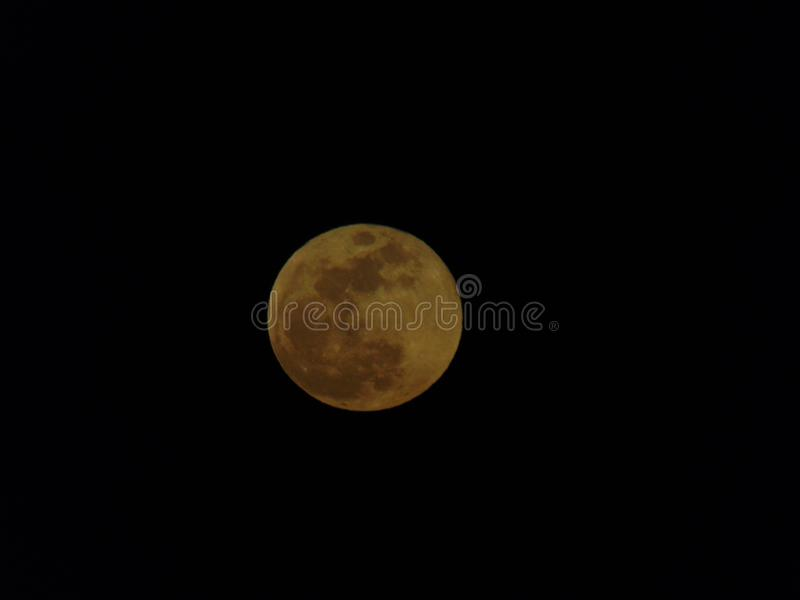Red moon. stock photo
