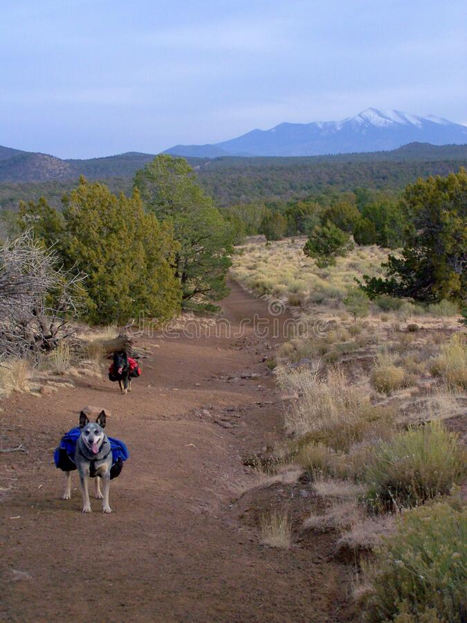 Red Mountain Trail Free Public Domain Cc0 Image
