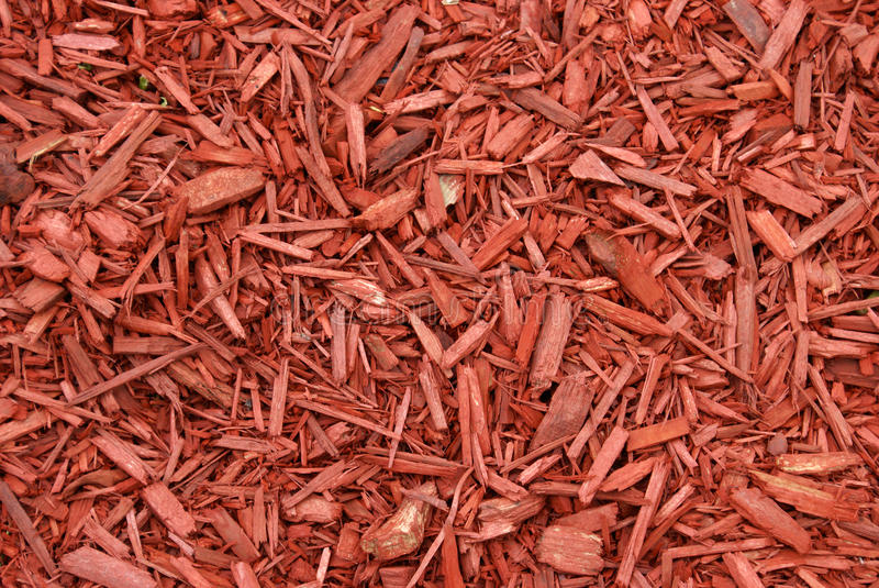 Red Mulch royalty free stock photo