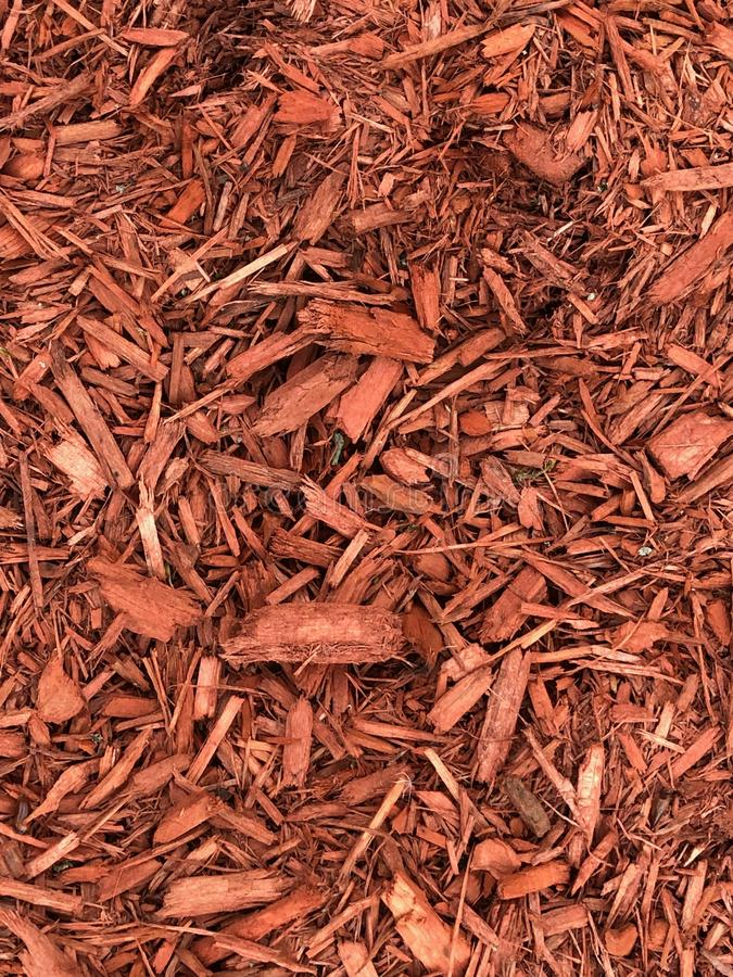 Red Mulch. Used to help keep moisture and water to keep the roots wet royalty free stock photos