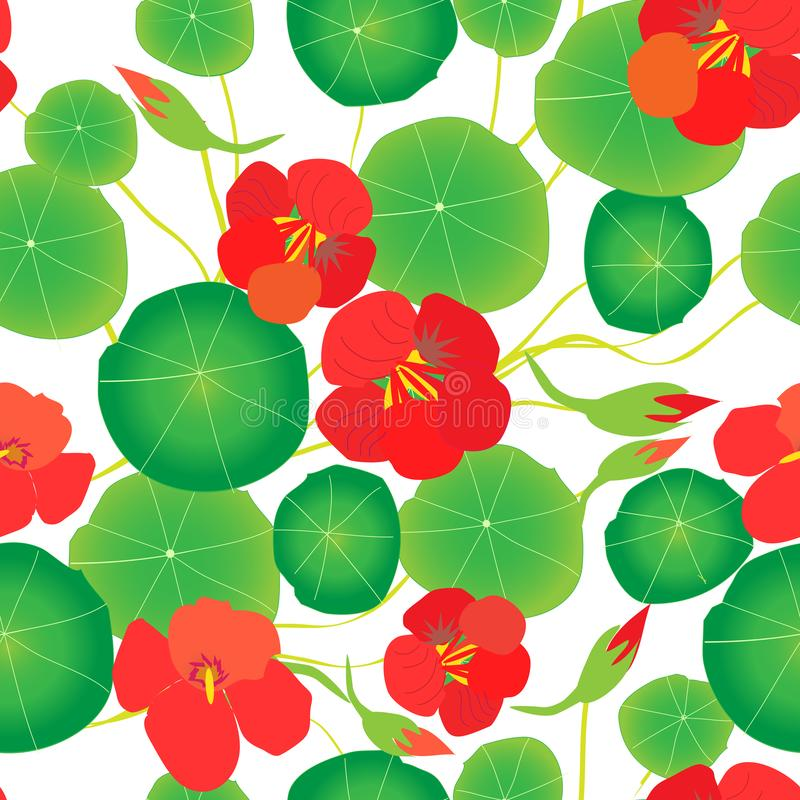 Red nasturtium, green leaves on a white background. Seamless pattern. stock illustration